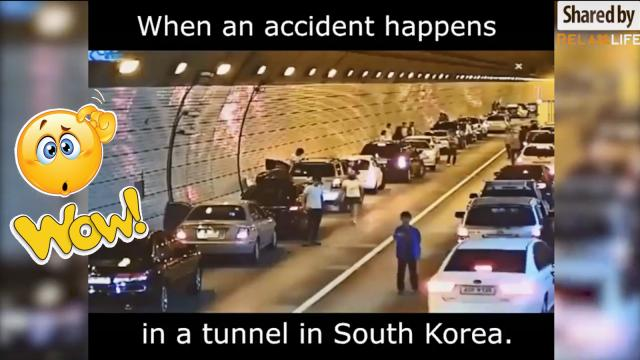 How Korean people deal with accident?