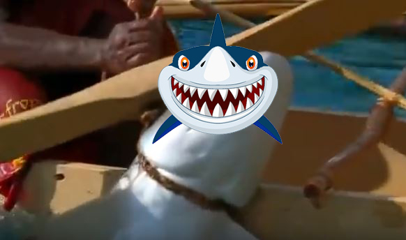 Săn cá mập bằng phương pháp thô sơ nhất: Đỉnh cao săn cá mập là đây