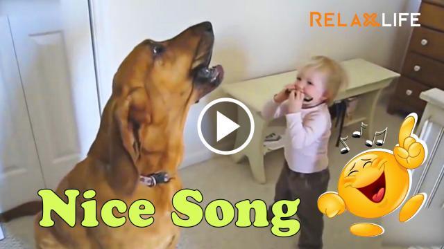 Hãy đưa cho tôi cái mic, tôi hát con hay hơn