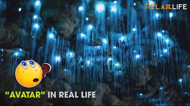 Khung cảnh tuyệt diệu đẹp đẽ của các hang động trên thế giới